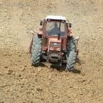 DSCF0038 150x150 - In den beginne